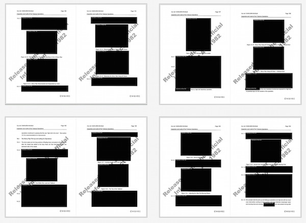 Some pages of the report were almost completely redacted.